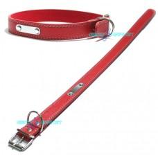 Collare con medaglietta cuoio per cani taglia medio rosso collarino pelle